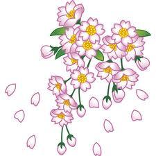 桜imagesCAGFUFMG.jpg