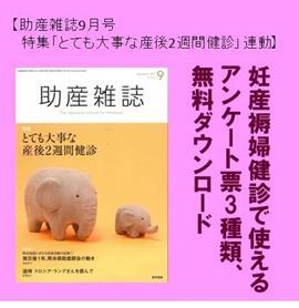 【助産雑誌9月号特集連動】妊産褥婦健診のためのアンケート票 イメージ