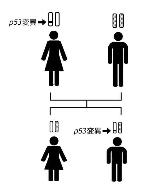 貼る用イラスト9-1 - コピー.jpg