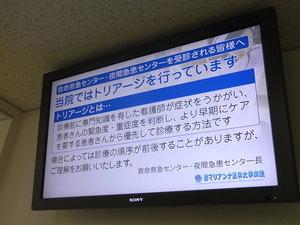 fujino_pic1.JPG