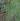 正方形;蜘蛛の糸写真.jpgのサムネイル画像のサムネイル画像のサムネイル画像のサムネイル画像のサムネイル画像