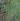 正方形;蜘蛛の糸写真.jpgのサムネイル画像のサムネイル画像のサムネイル画像のサムネイル画像のサムネイル画像のサムネイル画像のサムネイル画像のサムネイル画像のサムネイル画像のサムネイル画像のサムネイル画像