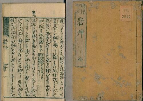 図8砦草 - コピー.JPG
