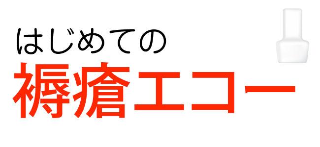 はじめての褥瘡エコー(前編)