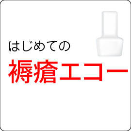 はじめての褥瘡エコー(後編) イメージ