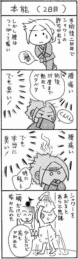kutsushita_14.jpg