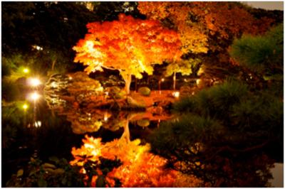 yamauchi01_01.jpg
